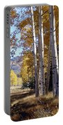 Autumn Chama New Mexico Portable Battery Charger