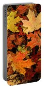 Autumn Color Portable Battery Charger
