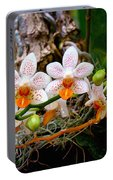 Autumn Colored Orchids Portable Battery Charger