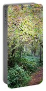 Autumn Colors In The Forest Portable Battery Charger