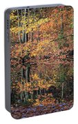Autumn Colors Reflect Portable Battery Charger