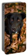Autumn Dog Portable Battery Charger