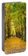 Autumn Entrance 2 Portable Battery Charger