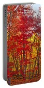 Autumn Experience Portable Battery Charger