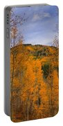 Autumn Flames Portable Battery Charger