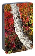 Autumn Foliage In Finland Portable Battery Charger
