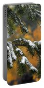 Autumn Foliage Portable Battery Charger