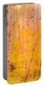 Autumn Forest Wbirch Trees Canada Portable Battery Charger