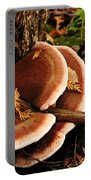 Autumn Fungi Portable Battery Charger