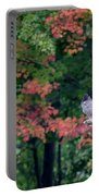 Autumn Hawk Portable Battery Charger