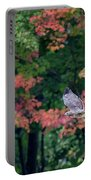 Autumn Hawk Square Portable Battery Charger