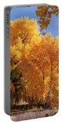 Autumn In Curtin Portable Battery Charger