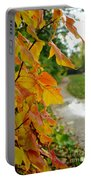 Autumn In Ellenberger Portable Battery Charger
