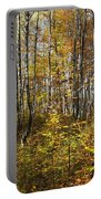 Autumn In The Birches Forest Portable Battery Charger