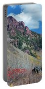 Autumn In The Aspen Hills Portable Battery Charger
