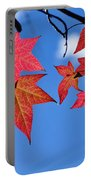 Autumn In The Sky Portable Battery Charger