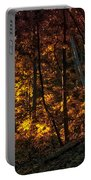Autumn In The Woods Portable Battery Charger