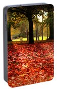 Autumn In Woodthorpe Portable Battery Charger