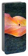 Autumn Leaf In August Portable Battery Charger