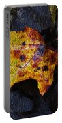 Autumn Leaf On Ground Portable Battery Charger