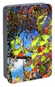 Autumn Leaves 243 L Portable Battery Charger
