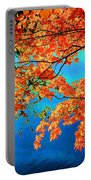 Autumn Leaves 8 Portable Battery Charger