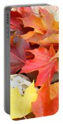 Autumn Leaves Art Print Coastal Fossil Rocks Baslee Troutman Portable Battery Charger