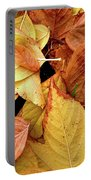 Autumn Leaves Portable Battery Charger by Carlos Caetano