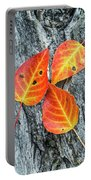 Autumn Leaves On Tree Bark Portable Battery Charger