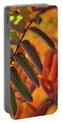 Autumn Leaves - Patagonia Portable Battery Charger