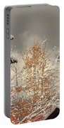 Autumn Leaves Winter Snow Portable Battery Charger