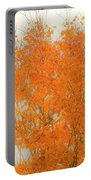 Autumn Leaves2 Portable Battery Charger