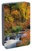 Autumn Magic Portable Battery Charger