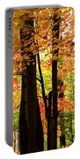 Autumn Mix Portable Battery Charger