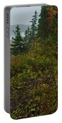Autumn Nor' Easter Portable Battery Charger