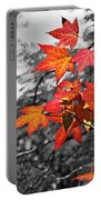 Autumn On Black And White Portable Battery Charger