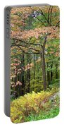 Autumn Paints A Dogwood And Ferns Portable Battery Charger