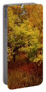 Autumn Palette Portable Battery Charger by Carol Cavalaris
