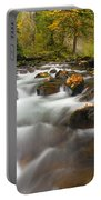 Autumn Passages Portable Battery Charger