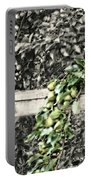 Autumn Pear Tree Portable Battery Charger