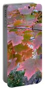 Autumn Pink 2 Portable Battery Charger
