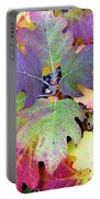 Autumn Rainbows Portable Battery Charger