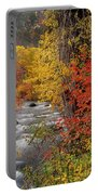 Autumn Rapids Portable Battery Charger