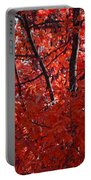 Autumn Red Trees 2015 Portable Battery Charger