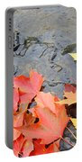 Autumn River Landscape Red Fall Leaves Portable Battery Charger