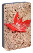 Autumn Sand Portable Battery Charger