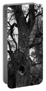 Autumn Spook In Black And White Portable Battery Charger