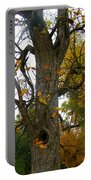 Autumn Spook Portable Battery Charger