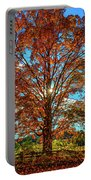 Autumn Star- Paint Portable Battery Charger
