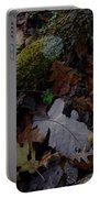 Autumn Still-life Portable Battery Charger